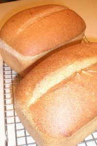 Honey Whole Wheat Sourdough Sandwich Bread