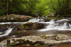 Springtime cascades in the Smoky Mountains.  Prints from $32. Framed prints and canvas wraps are also available.