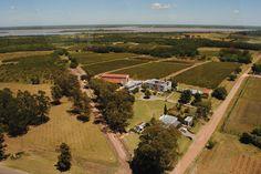 Narbona | Wine Lodge Uruguay