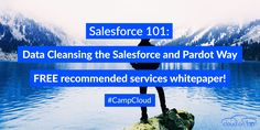 Need to clean your data for Salesforce or #Pardot but can't decide on which service to use? Our free whitepaper can help you decide!