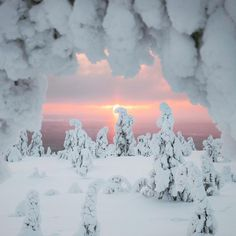 Lovely Lapland Winter Pictures, Nature Pictures, Cool Pictures, Winter Love, Winter Snow, Snow Scenes, Winter Scenes, Beautiful World, Beautiful Images