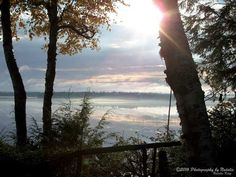 Misty morning at the camp. by seeAroostook on Etsy