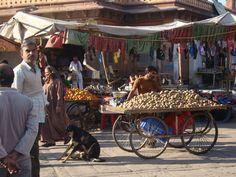 market under the clock tower, Jodhpur