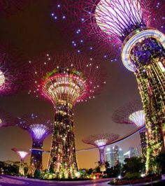 My country SINGAPORE! Singapore quote One people One nation One singapore Singapore Garden, Singapore Sling, Singapore Travel, Singapore Singapore, Places Around The World, Travel Around The World, Laos, Places To Travel, Places To See
