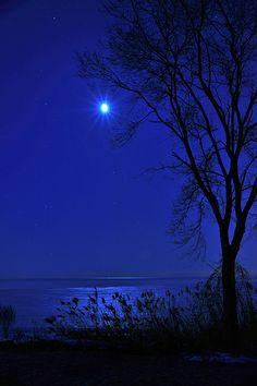 'Moonlit ' - photo by Wade Bryant, via Flickr