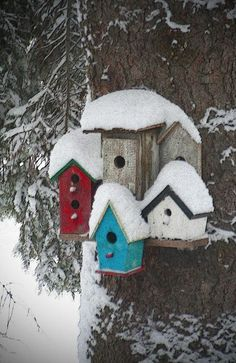 These bird houses look so cute huddled together