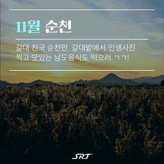 bfaXv Travel Tours, Travel Information, Korean, Life, Korean Language