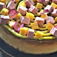 Recept : Cheesecake s mučenkovými marshmallows s tonkou a čerstvým mangem   ReceptyOnLine.cz - kuchařka, recepty a inspirace Marshmallows, Fruit Salad, Cheesecake, Manga, Food, Marshmallow, Fruit Salads, Cheesecakes, Manga Anime