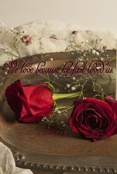 1 John 4:19   This is another rose to remind our dear Rosie, that we are keeping her in prayer, and trusting in the Lord. Love you, Rosie.