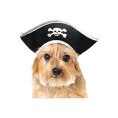 Dog Pirate Hat