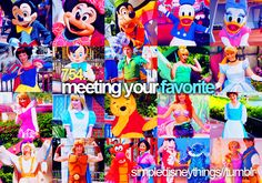 Haven't met Peter, TInerbell, Alice, Ariel, Belle, Hercules, Mulan, Mushu, Lilo && Stich, or Rapunzel and Flynn! How sad! :( I'm going on a character hunt next time!