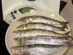 Sardinas a la sal Thermomix Fish And Seafood, Healthy Recipes, Meat, Chicken, Cooking, Ethnic Recipes, Thumbnail Image, Gourmet, Cooking Recipes