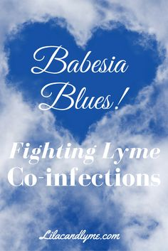 Babesia Fighting Lyme co-infections