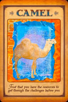 animal spirit guide tarot cards - Google Search