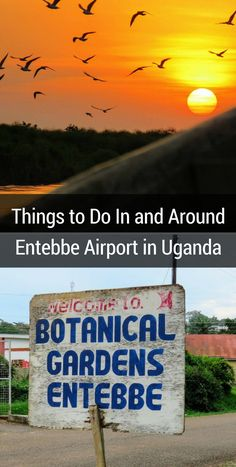 Things to Do In and Around Entebbe Airport in Uganda | Sidewalk Safari