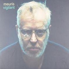 Vigilant - Stijn Meuris.