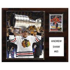 C and I Collectables NHL 15W x 12H in. Andrew Shaw Chicago Blackhawks Player Plaque - 1215BRSHAW