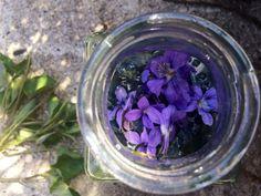 Krása   . . . 365 věcí, které si můžete udělat doma sami Samos, Cabbage, Homemade, Vegetables, Plants, Food, Home Made, Essen, Cabbages
