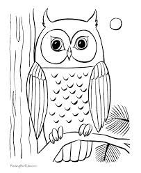 owl owl coloring pagesfree printable