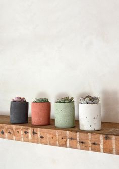 Cylinder Concrete Pot in Terracotta, City Grey, Dark Charcoal or Sage Green with Echeveria Succulent Set Diy Concrete Planters, Cement Planters, Wall Planters, Concrete Crafts, Concrete Projects, Terracotta, Beton Diy, Painting Concrete, Succulent Pots