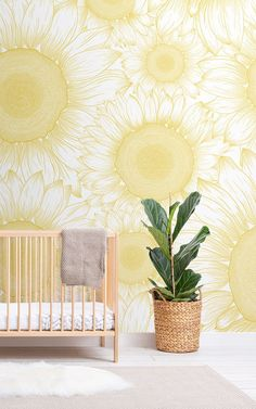 Welcome the freshness of sunshine yellow to your wall with the sunflower etch wallpaper, a wonderfully detailed mural. Sunflower Head, Sunflower Design, Yellow Sunflower, Feature Wall Design, Sunflower Wallpaper, Illustration, Floral Wall, Bird Prints, Paint Designs