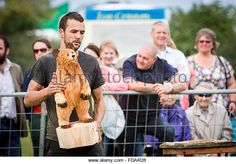 Knutsford, Cheshire, UK, 29th Aug, 2015. The 11th English Open Chainsaw Carving Competition Cheshire Game & Country Fair - Stock Image