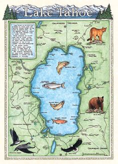 Lake Tahoe California Nevada Satellite Poster Map Sierras - Map of reno and lake tahoe