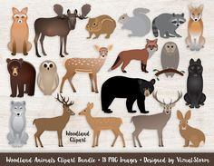 Woodland Animals Clipart Bundle #woodlandclipart #forestclipart #forestanimals #woodlandanimals #woodlandcritters #woodlandgraphics #forestgraphics #deerclipart #mooseclipart #wolfclipart