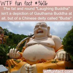 Why are Buddha's images and statues so fat? - WTF fun facts   Rub His Belly for Good Luck :P