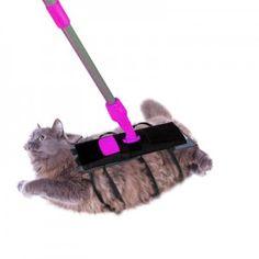 Parce que votre chat vous le doit bien !