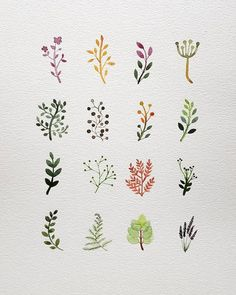 watercolor The post watercolor appeared first on Blumen ideen. Watercolor Cards, Watercolor Illustration, Illustration Flower, Watercolor Tattoos, Watercolor Artists, Watercolor Clipart, Herbs Illustration, Watercolor Design, Plants Watercolor