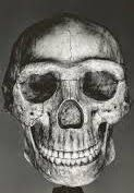 Nephilim Chronicles: Giant Human Skeletons: Grinning Skull of a Giant is Uncovered at Sugar Creek, Indiana