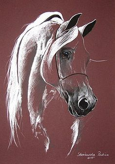 Pictures on request Paulina Stasikowska - Art Drawings Horse Drawings, Animal Drawings, Art Drawings, Arte Equina, Horse Artwork, Equine Art, Pastel Art, Horse Pictures, Animal Paintings
