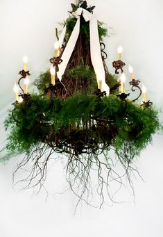 Fern-and-Ribbon-Covered-Chandelier