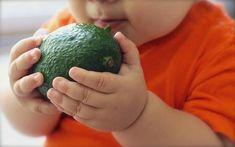 """Vindecare completă! Chiar și în cazul celui mai complicat diagnostic, luați un sâmbure, cu grijă…"""". Avocado – fructul care rezolvă multe probleme de sănătate"""