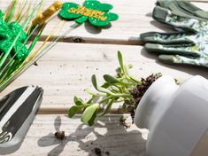 We hope you enjoyed St. Patrick's Day! Not feeling lucky today? Just make your own luck. Plant money trees, shamrock plants, jade plants or even Hawaiian tea plants using our gardening tools. Bring in good luck and good health! 🍀 #gardenweasel #gardeningtools #stpatricksday #lucky