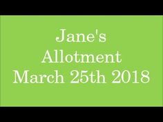 Jane's Allotment March 25th 2018