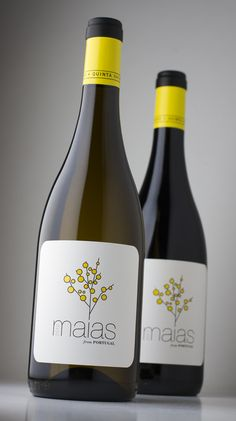 Maias – Quinta das Maias is a small organic Portuguese estate, surrounded by 'Weaver's Broom' (Maias), with its distinctive yellow flowers #taninotanino #vinosmaximum - http://www.thirsty-cat.com/