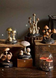 Hand Painted German Resin Scientific Model of Mushrooms on Black Base.