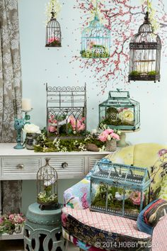 Beautiful birdcages