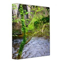 Stone Bridge and Flowing River 3 Ring Binder Summer Tunes, Moon Fairy, Fairy Queen, Butterfly Fairy, Blue Fairy, Moon Magic, Anne Of Green Gables, Blue Glitter, Bokeh