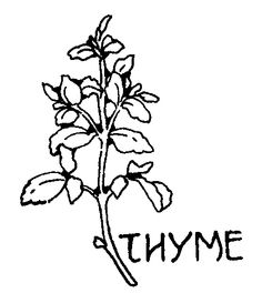 Printable Cherry Coloring Page Free PDF Download At Coloringcafe Coloring Pages