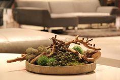 Groen decoratie op houten schaal www.decoratiestyling.nl