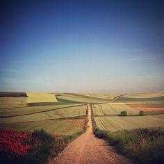 Michael George (@migeophoto) walked for 34 days from Saint-Jean-Pied-de-Port in France to Santiago de Compostela in Spain, along the Camino de Santiago pilgrimage route, a 790 kilometer journey.