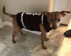 Small Animal Football Sweater by Enchanting Creations on Etsy