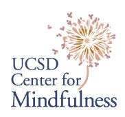 Guided Audio Files to Practice Mindfulness Based Stress Reduction