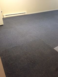 Carpet cleaning mid service image in Moncton