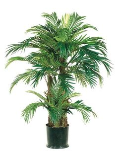 Pack of 2 Potted Artificial Tropical Green Phoenix Palm Trees 4' * Click on the image for additional details.
