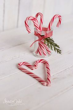{•It's A Candy Cane World•}
