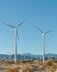 Wind/ Energy Pros and Cons You May Not Know